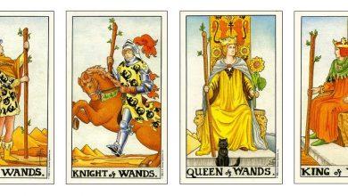 Tương Tác Giữa Các Lá Page, Knight, Queen và King 2