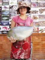 Top 2 địa chỉ mua hải sản tươi sống uy tín, chất lượng tại thành phố Hồ Chí Minh