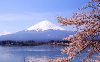 Top 4 Thiên đường mua sắm nổi bật nhất tại Tokyo Nhật Bản