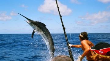 Top 7 Địa chỉ bán dụng cụ câu cá tốt nhất Sài gòn