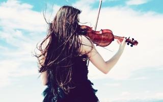 Top 7 Cửa hàng bán nhạc cụ tại TPHCM uy tín nhất