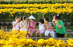 Top 7 Chợ hoa Tết lớn nhất miền Tây 2017
