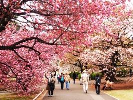 Top 7 Khu mua sắm hấp dẫn, nổi tiếng nhất  Nhật Bản